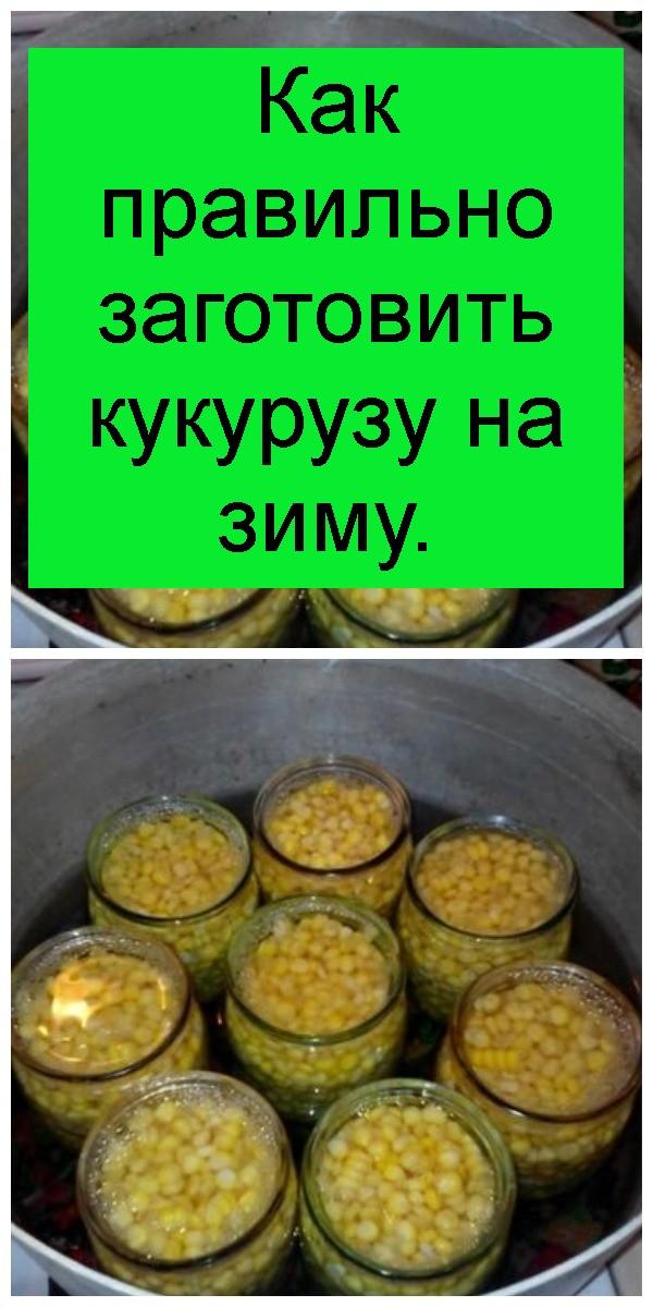 Как правильно заготовить кукурузу на зиму 4