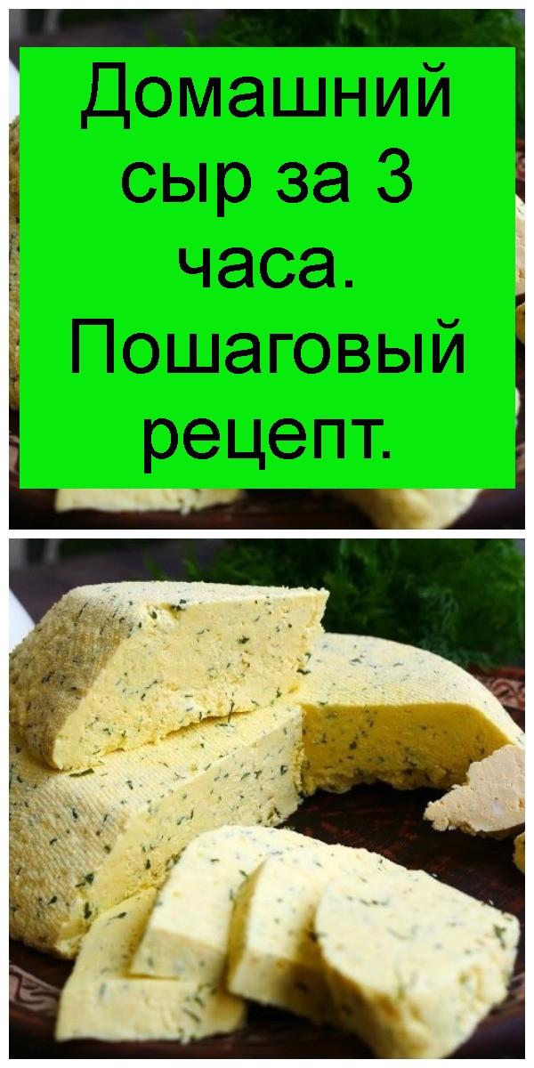 Домашний сыр за 3 часа. Пошаговый рецепт 4