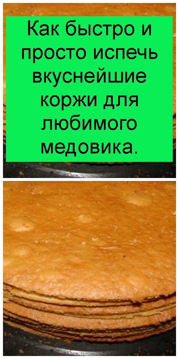 kak-bystro-i-prosto-ispech-vkusneyshie-korzhi-dlya-lyubimogo-medovika-4