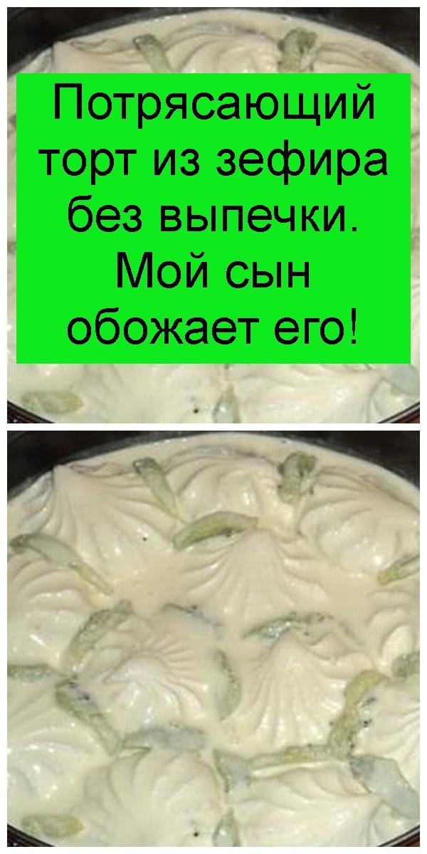 potryasayuschiy-tort-iz-zefira-bez-vypechki-4
